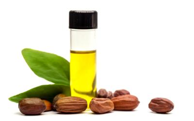 Golden Jojoba Oil – Natures Blessing for Beauty